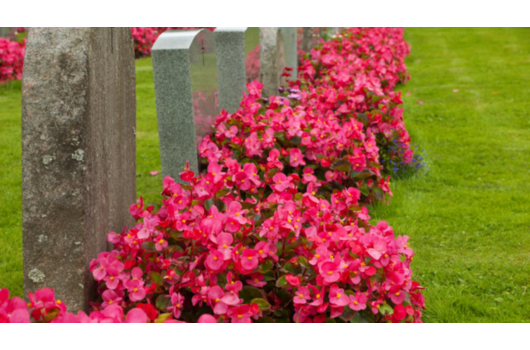 Tilbud om gravstell